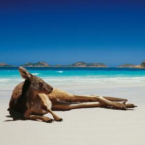 Австралия 4