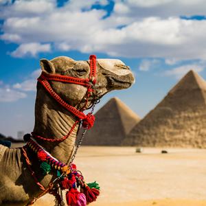egypt-2006-