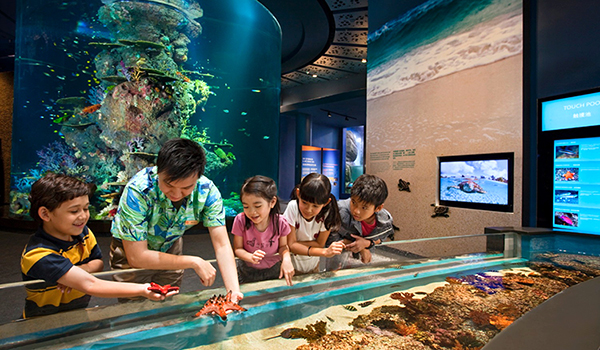 Marine Life Park 600-350