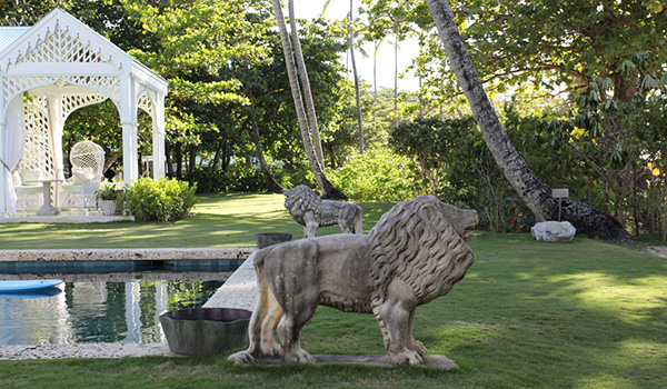 gallery2_lion600-350