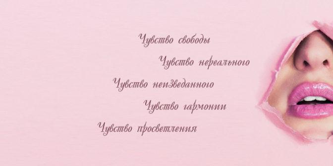 kollekciya-telexausa-leto-osen-2019