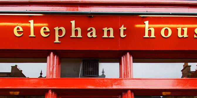 kafe-the-elephant-house-mesto-gde-sozdavalos-volshebstvo